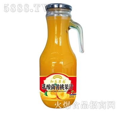 知乐果园乳酸菌黄桃果肉果汁1.26L