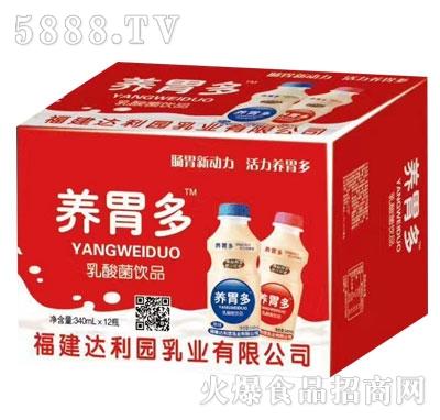 养胃多乳酸菌饮品(箱)