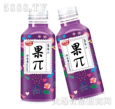九里源蓝莓汁果π500ml
