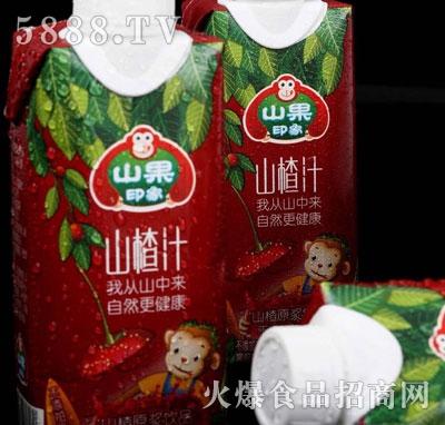 山果印象山楂汁(盒)