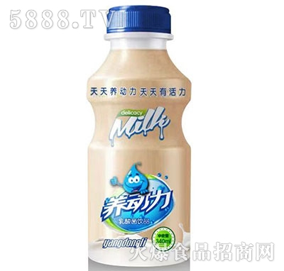 养动力乳酸菌饮品340ml