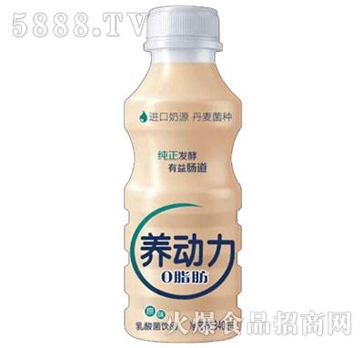 养动力乳酸菌340ml