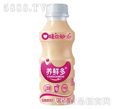 养鲜多乳酸菌饮品草莓味1250ml