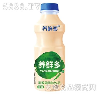 养鲜多乳酸菌1.25L原味正面