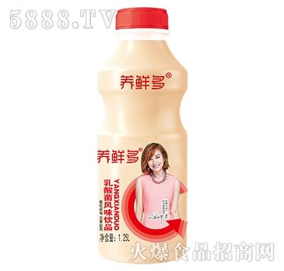 养鲜多乳酸菌风味饮品1.25L