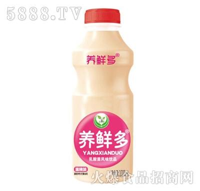 养鲜多乳酸菌风味饮品1000毫升