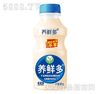 养鲜多乳酸菌风味饮品原味340毫升
