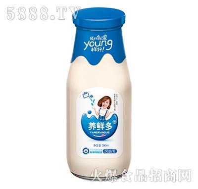 养鲜多发酵酸奶原味300ml