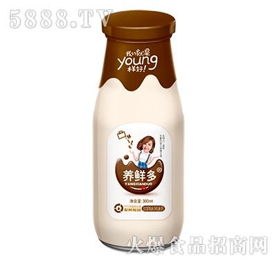 养鲜多发酵酸奶碳烧味300ml