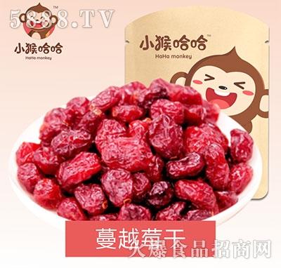 小猴哈哈蔓越莓干