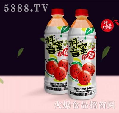抖音蜜小楂山楂枸杞果汁饮料1L