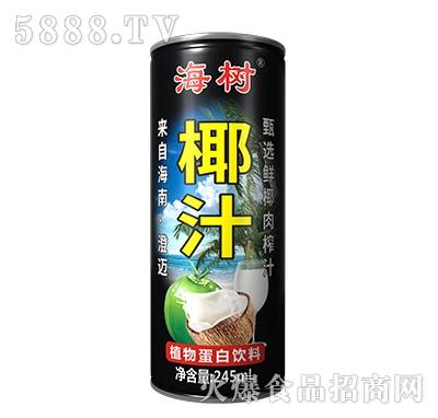 海树椰子汁植物蛋白饮料245ml