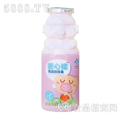 李子园爱心猪乳酸菌饮品160ml