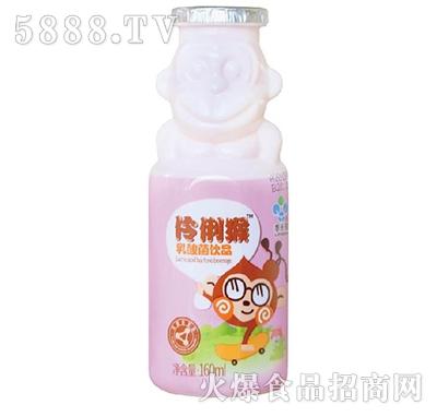 李子园伶俐猴乳酸菌饮品160ml