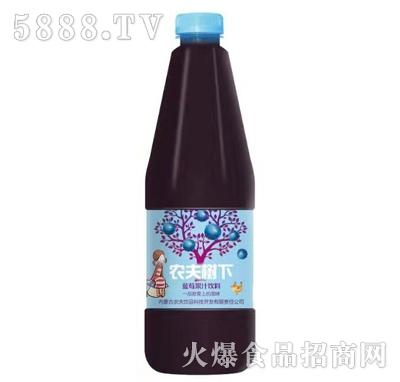 农夫树下蓝莓果汁饮料
