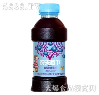 农夫树下蓝莓果汁