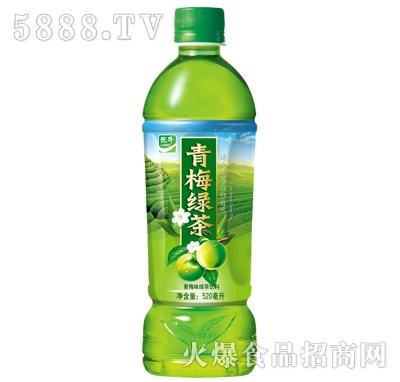 乐牛青梅绿茶饮料520ml