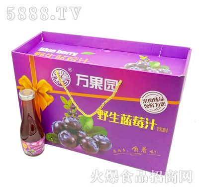 万果园蓝莓汁玻璃瓶饮料