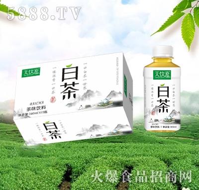 天饮源白茶茶味饮品380mlx15瓶