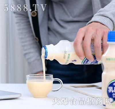 麦那特乳酸菌饮料340ml