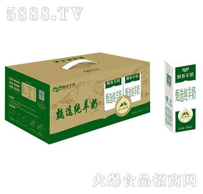 阳春羊奶甄选纯羊奶产品图