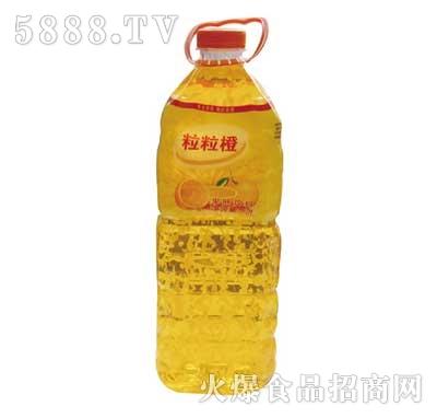 佳美粒粒橙果味饮料2L