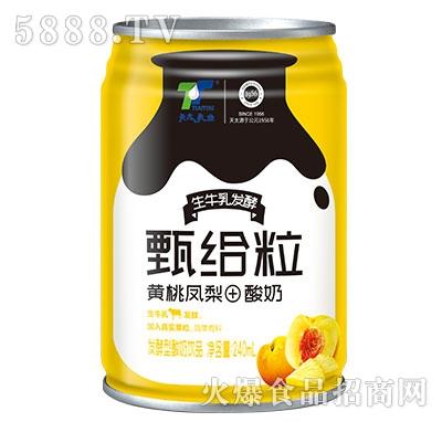 天太乳业甄给粒黄桃凤梨+酸奶240ml