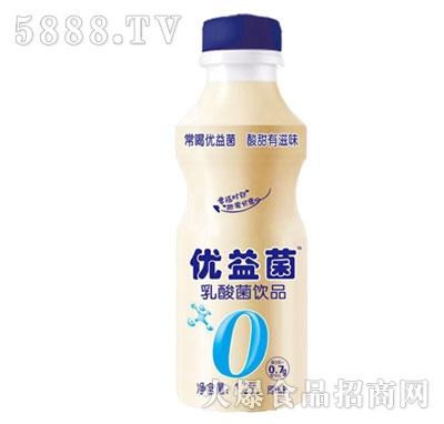 味和力乳酸菌饮品原味1.25L