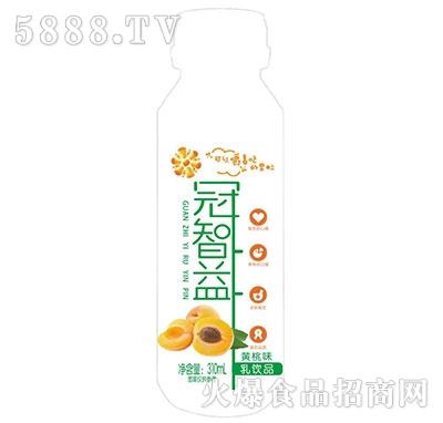 冠智益乳饮品黄桃味310ml产品图