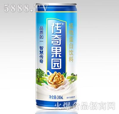 传奇果园核桃露植物蛋白饮料240ml罐装产品图