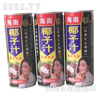 汇之果海南椰子汁