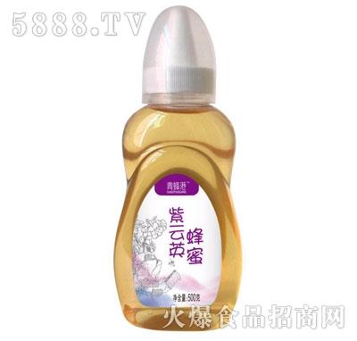 青蜂港紫云英蜂蜜500g