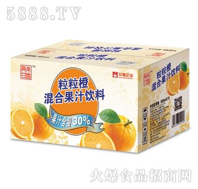 真果甘露粒粒橙600ml外箱