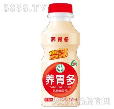 畅养养胃多乳酸菌饮品草莓味340ml产品图