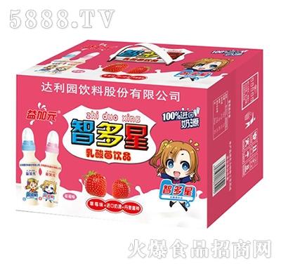 益加元智多星乳酸菌饮品草莓味箱装