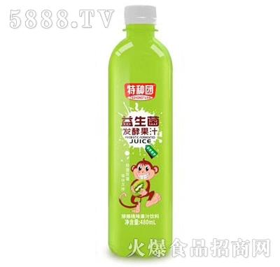 特种团益生菌发酵猕猴桃果汁480ml