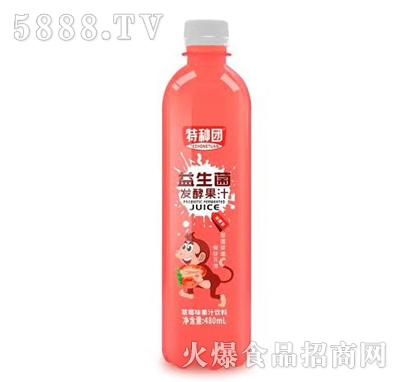 特种团益生菌发酵草莓果汁480ml