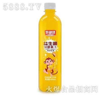 特种团益生菌发酵百香果果汁480ml
