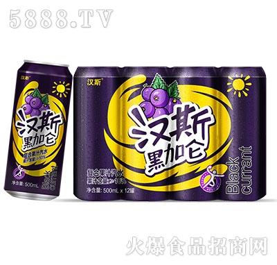 汉斯黑加仑果汁汽水500mlx12罐