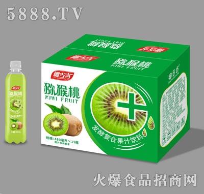 椰当当猕猴桃发酵复合果汁饮料480mlX15