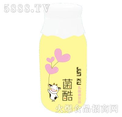 智爽菌酷乳酸菌饮品(瓶子)