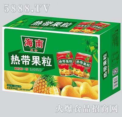 海南热带果粒果汁箱装