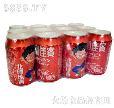 北国佳��什锦果味汽水罐塑包