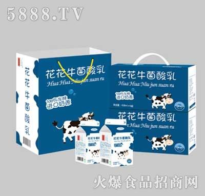 花花牛菌酸乳乳酸菌(礼盒)