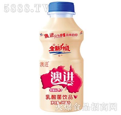 澳进乳酸菌饮品340ml草莓味