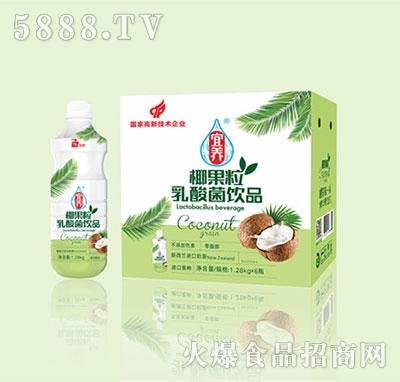 宜养椰果粒乳酸菌1.28KGx6