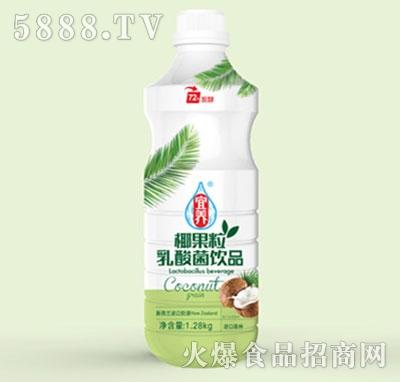 宜养椰果粒乳酸菌1.28KG