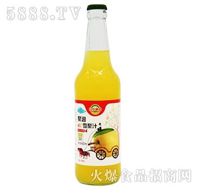 亿佳果园梨润雪梨汁果汁420ml