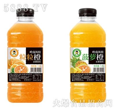 1L×12玉川果先生粒粒橙、菠萝橙水果饮料