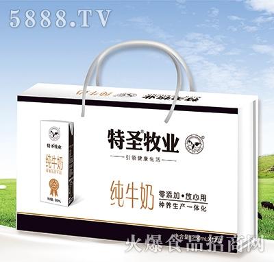 特圣牧业纯牛奶饮料250mlx12盒